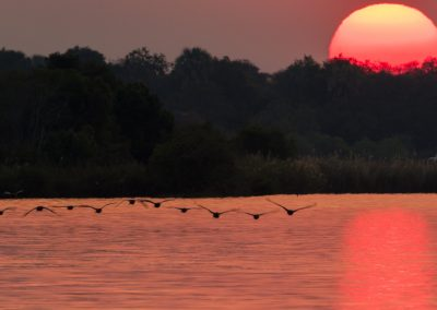 Sunset on the Zambezi, Zimbabwe